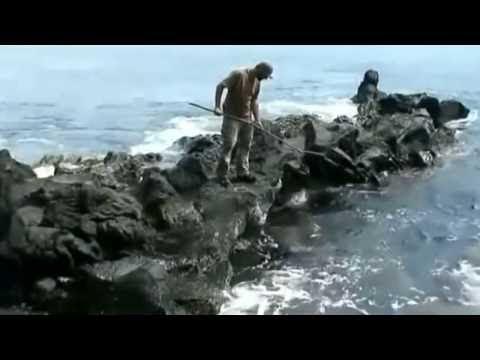 Auf Einer Insel überleben
