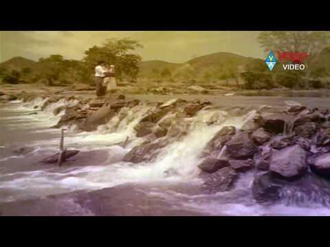 Gorintaku Songs - Ela Ela Daachaavo - Sobhan Babu, Sujatha