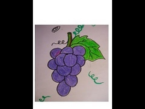 Easy Drawing For Kids Grapes Drawing And Coloring In Simple Step Youtube