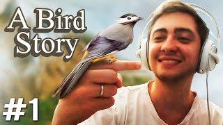 A BIRD STORY - MEU NOVO AMIGUINHO! - Parte 1