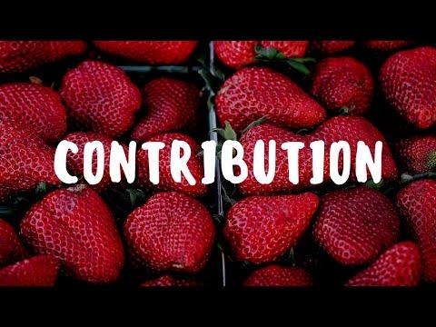 Contribution in the Organic Garden – Garden Gift 15