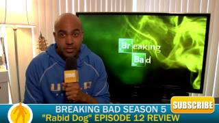 "Breaking Bad ""Rabid Dog"" Season 5 Episode 12 Review"