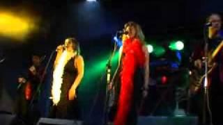 "Grup Musical ORGUE DE GATS  · 2006-2009 · ""Remena Vacil·lant"""