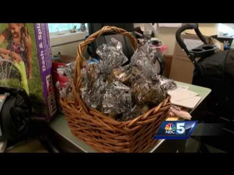 Online auction to support Vermont animals