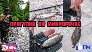 ГОЛАВЛЬ НА МИКРОРЕЧКЕ. В этом ручье полно рыбы! Ультралайт рыбалка.