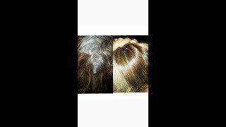 احدث طرق صبغ وتغطية الشعر الابيض 100%بالواااااان الاشقرات