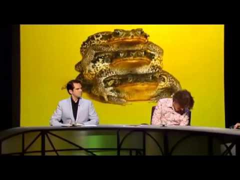 QI XL Series F Episode 10   Flora and Fauna