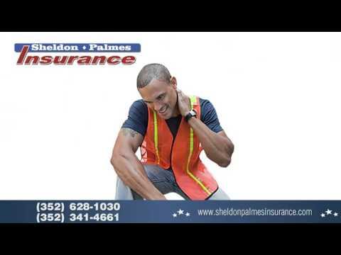 Sheldon Palmes Insurance video 2