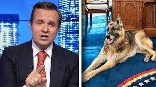 Biden's Dog Champ Targeted in Bizarre Newsmax Segment