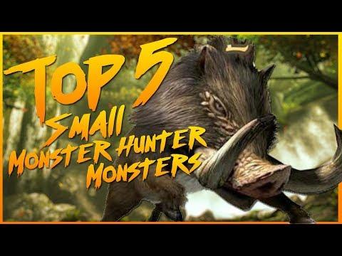 Top 5 Small Monster Hunter Monsters thumbnail