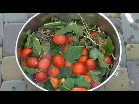 Соление помидоров
