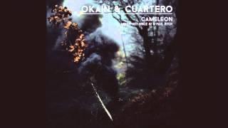 Okain & Cuartero - Cameleon