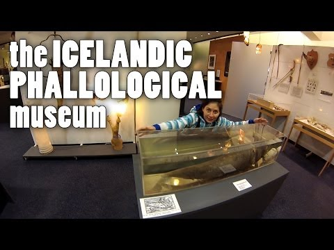 Iceland and the Phallological Museum