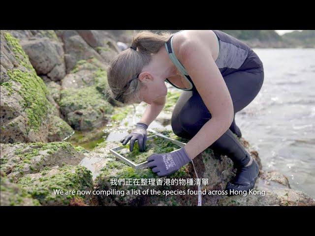 Exploring and cataloging the biodiversity of Hong Kong