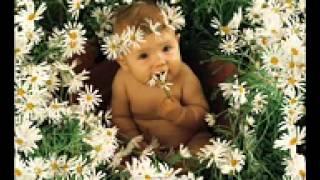 angel de paz andikiru3gp