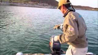 Mavungana Flyfishing - Lake Nasser