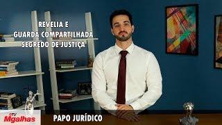Papo Jurídico - Revelia e guarda compartilhada - Segredo de Justiça
