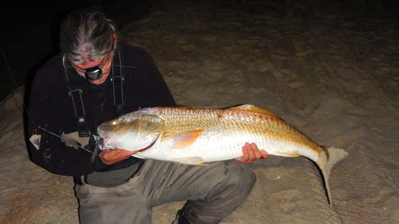 Epic outer banks drum fishing at night in the surf october for Surf fishing at night
