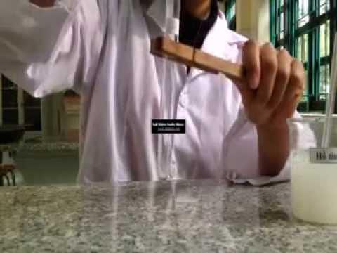 Thí nghiệm thủy phân hồ tinh bột bằng axit HCl