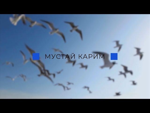 Изображение предпросмотра прочтения – ТатьянаМахмутова читает произведение «Урала сердцевина» (Карим Мустай)