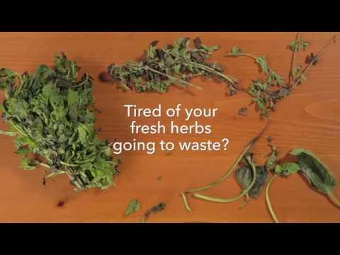 Mom Hacks: Always Have Fresh Herbs