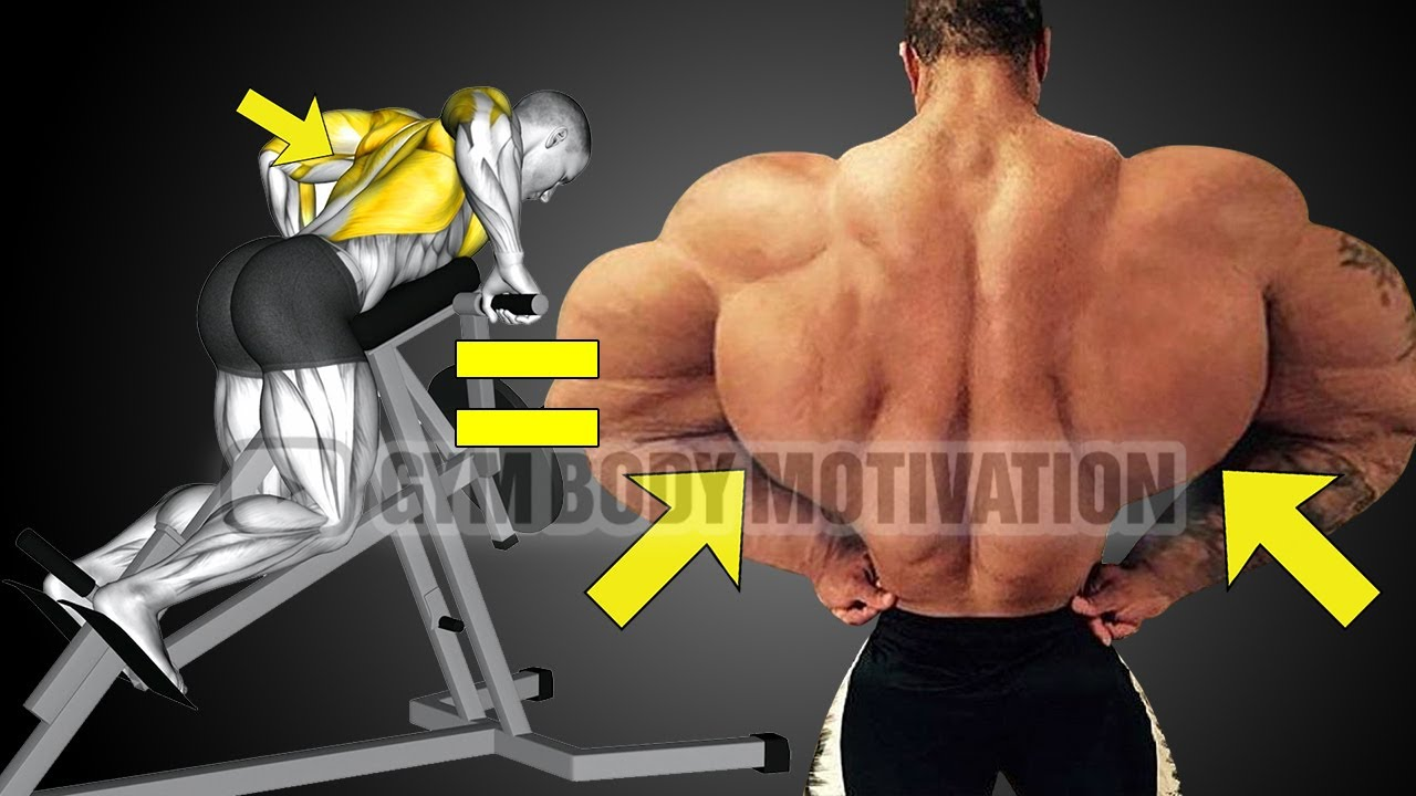 How To Build Your Back Workout (6 Effective Exercises)