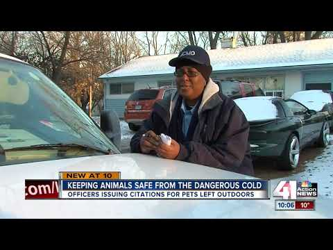 Animal control officers rescue animals from cold
