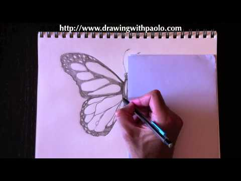 Dessiner un papillon avec paolo morrone youtube - Dessine un papillon ...