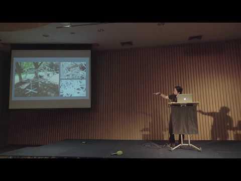 Seminar: Urban Media Art Academy - Prof. Priyakorn Pusawiro (Part 3)