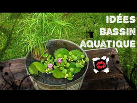 40 id es de bassins aquatiques en pot youtube - Plantes aquatiques pour petit bassin ...