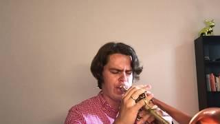 Уроки Трубы №3 -  Как импровизировать. Уровень новичок #1
