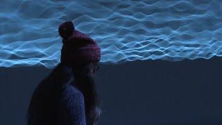 'Pulse' interactive exhibit turns heartbeats into art