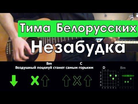 Тима Белорусских - Незабудка \ Разбор песни на гитаре \ Аккорды и бой