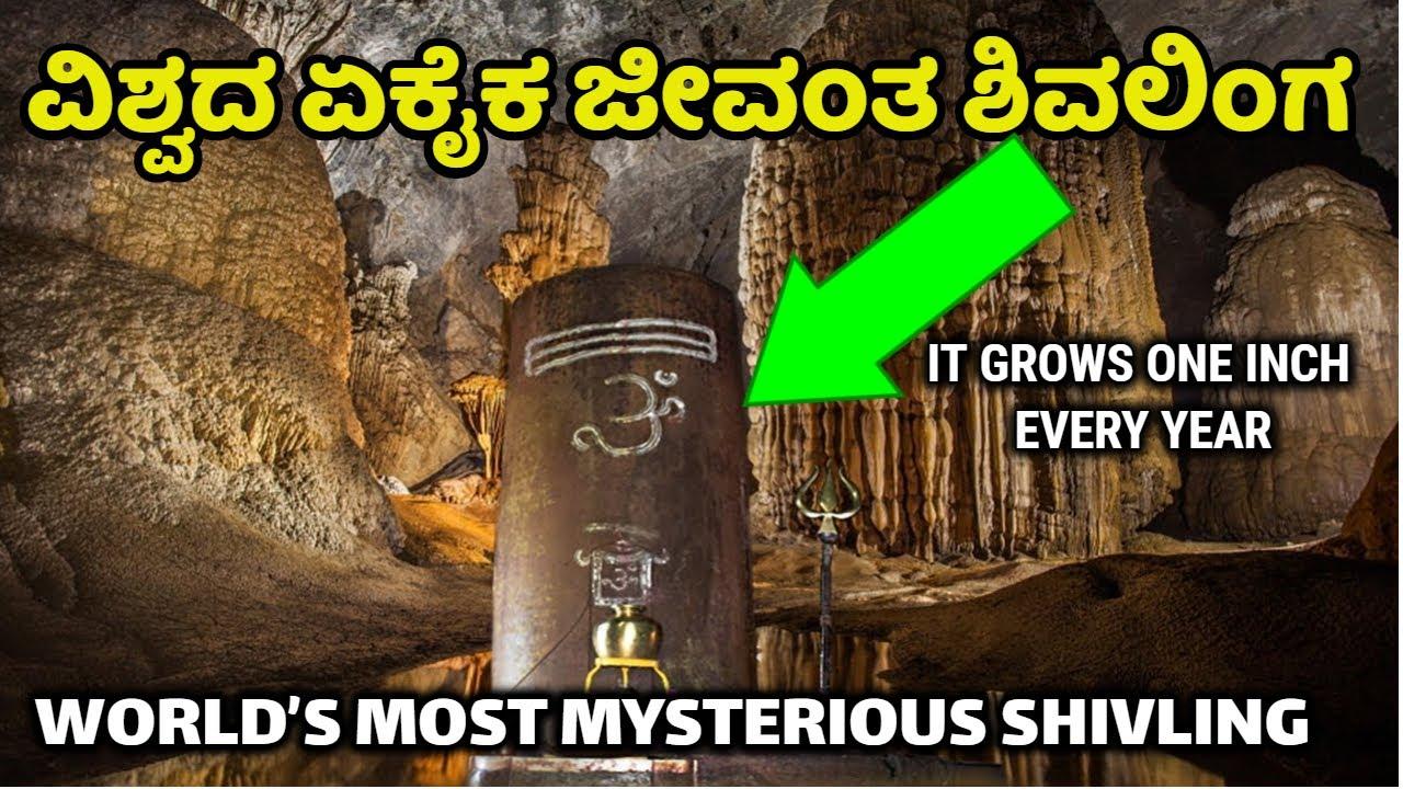 ವಿಶ್ವದ ಏಕೈಕ ಜೀವಂತ ಶಿವಲಿಂಗ | Matangeshwara Temple | Famous Shiva Temple |  Jyotirling | News |