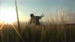 Pink Floyd - Fat old sun (subtitulado al español)