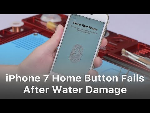How To Repair iPhone 7 Home Button Not Working After Water Damage