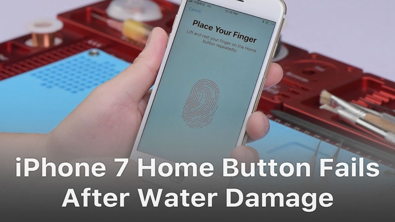save off 096ba eb59d How To Repair iPhone 7 Home Button Not Working After Water Damage