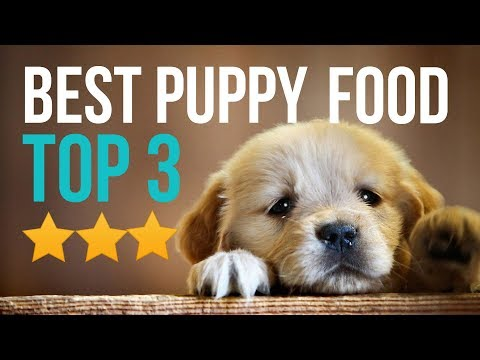 Best Dog Food For Puppies-Top 3 Best Dog Food For Puppies In 2018 Buyer Guide