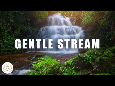 Calming Nature Sounds: Soothing Music, Relaxing Water Music, Meditate and Relaxation (Gentle Stream)