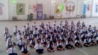 Colegio francisco de paula santander despedida de once 2013