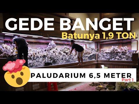 akuarium-sultan-project-paludarium-6,5-meter-the-aquatic-freak-style