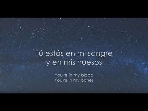 KODALINE | Blood and Bones (Subtitulada en...