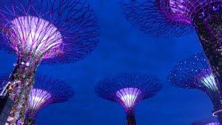 Сингапур: страна и столица. Фото Сингапура(Небольшое видео о Сингапуре: прогулка по Сингапуру 2015 года. Часто спрашивают: