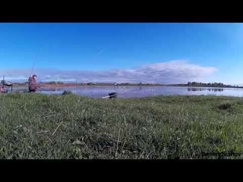 рыбалка на березорадинском озере