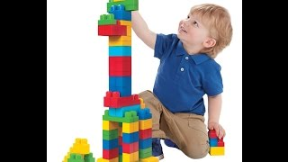 Review: Mega Bloks First Builders Big Building Bag, 80-Piece (Classic)