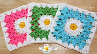 Daisy Granny Square 6 5 Motif Crochet Pattern Tutorial Youtube