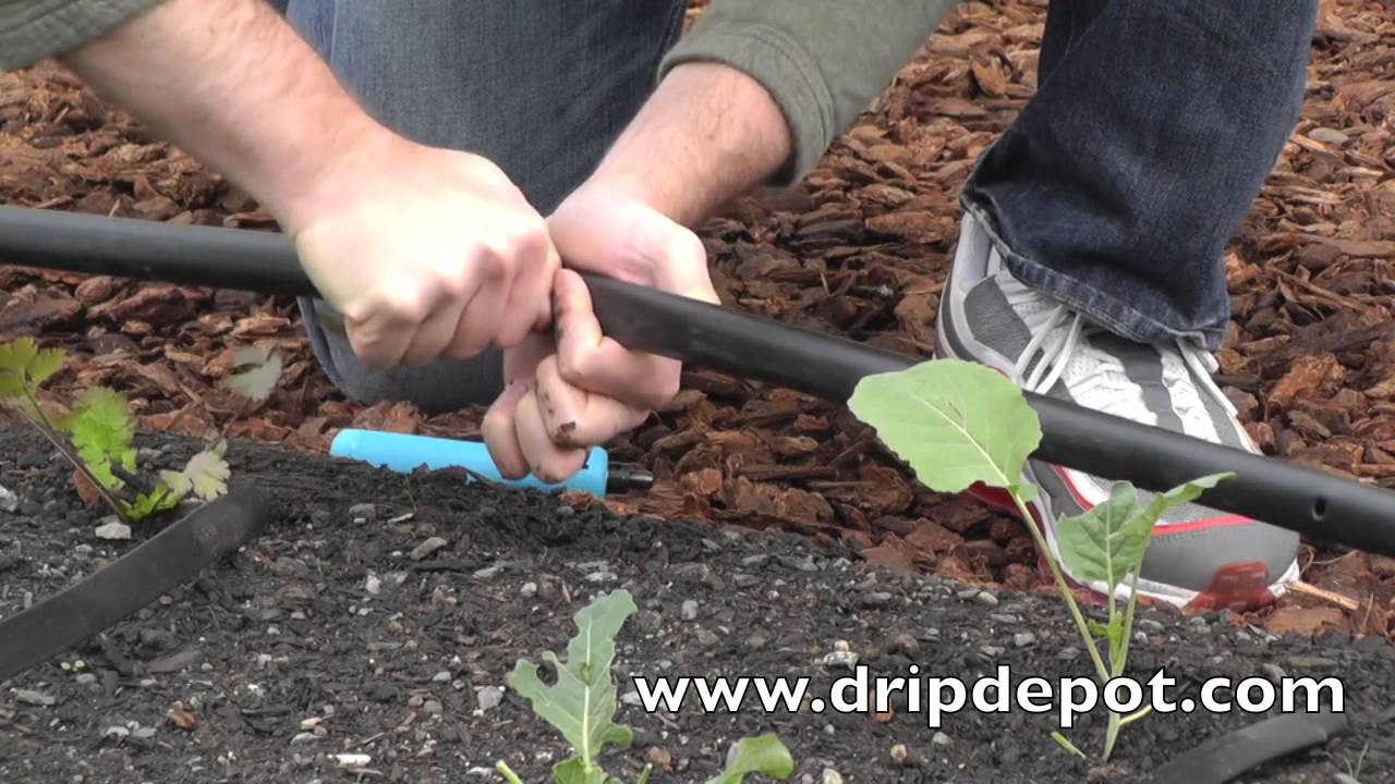 How To Set Up A Drip Irrigation System For Small Farms You