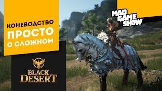 Black Desert. Разведение лошадей. Приручение лошади. Обновлено