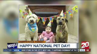 Happy National Pet Day!