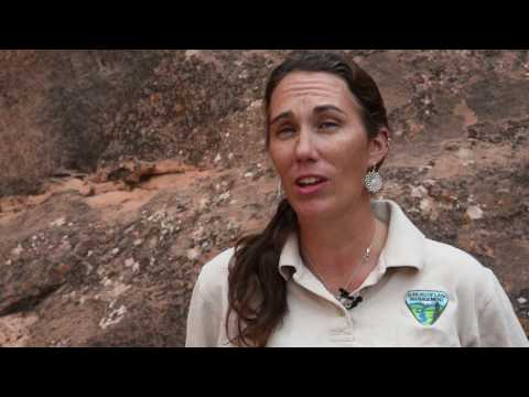 Respect and Protect: Paleontological Resources